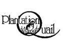 plantation quail logo
